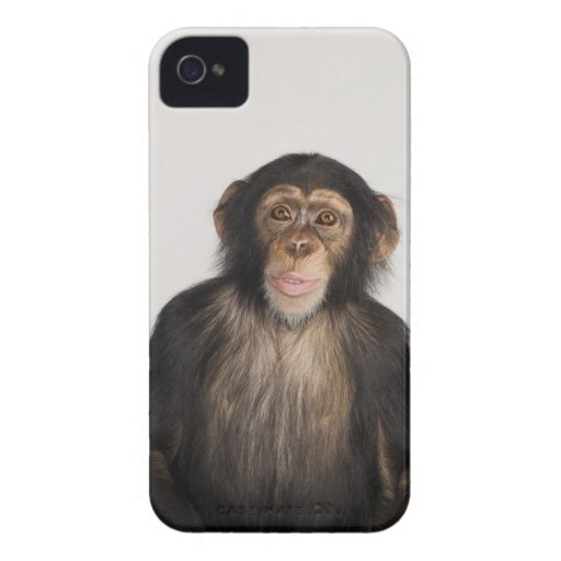 Affe iPhone 4 Case-Mate Hüllen