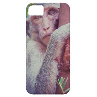 Affe Etui Fürs iPhone 5