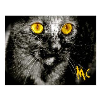 Affe-Katzen-Postkarte Postkarte