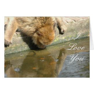 Affe-Liebe Karte