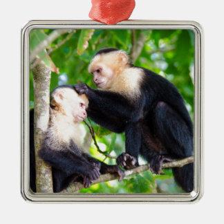 Affe-Liebe Silbernes Ornament