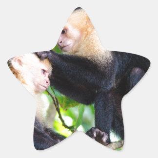 Affe-Liebe Stern-Aufkleber