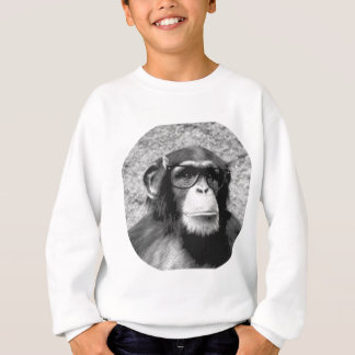 Affe-Nerd Glas-Evolution Sweatshirt