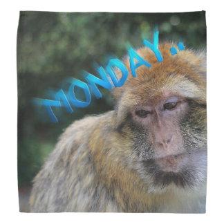 Affe traurig über Montag Halstuch
