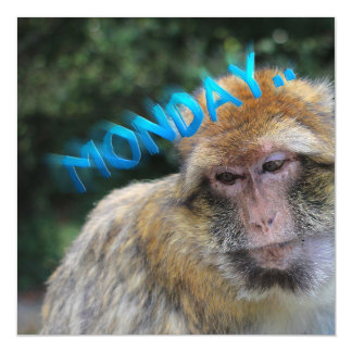 Affe traurig über Montag Magnetische Karte