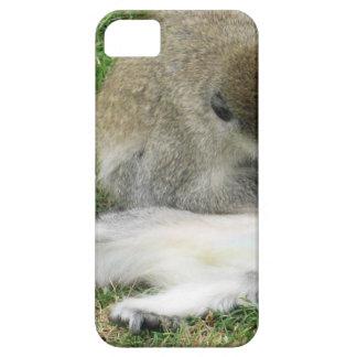 Affen iPhone 5 Etuis