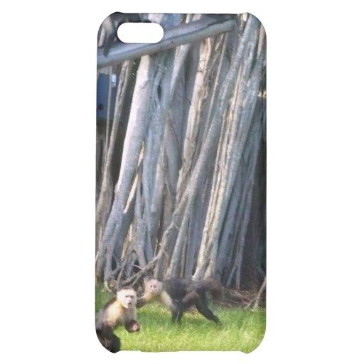 Affen iPhone 5C Hüllen