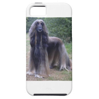 Afghanischer Jagdhund Hülle Fürs iPhone 5