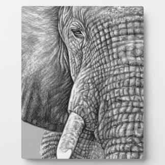 African Elephant Fotoplatte