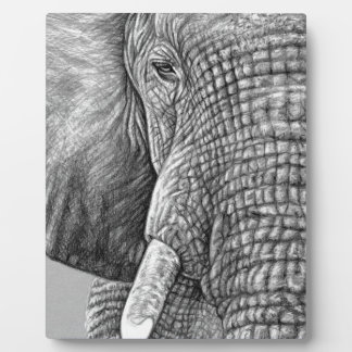 African Elephant Platte