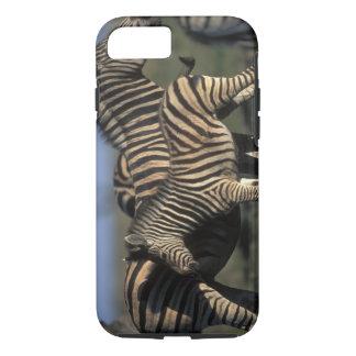 Afrika, Botswana, Chobe Nationalpark, Ebenen iPhone 8/7 Hülle