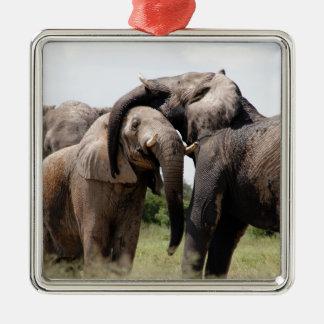 Afrika-Elefant-Familie Silbernes Ornament