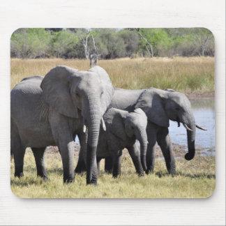 Afrika-Elefant-Herden Mousepad