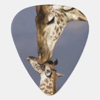 Afrika, Kenia, Masai Mara. Giraffen (Giraffe Plektrum