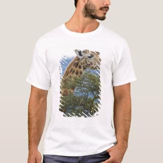 Afrika. Kenia. Rothschilds Giraffe in See T-Shirt