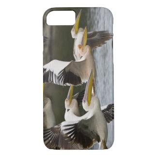 Afrika. Kenia. Weiße Pelikane im Flug in See iPhone 8/7 Hülle