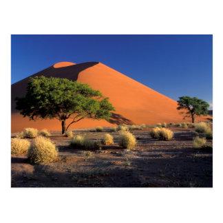 Afrika, Namibia, Namib-Naukluff Park, Sossosvlei Postkarte