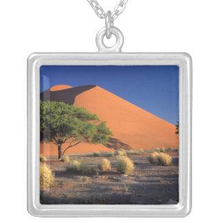 Afrika, Namibia, Namib-Naukluff Park, Sossosvlei Versilberte Kette