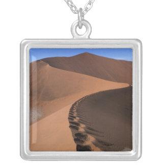Afrika, Namibia, Namib Naukluft Nationalpark, 2 Versilberte Kette