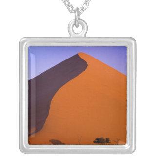 Afrika, Namibia, Namib NP, Sossusvlei, Sand Versilberte Kette