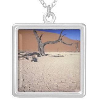 Afrika, Namibia, Sossusvlei Region. Sanddünen Versilberte Kette