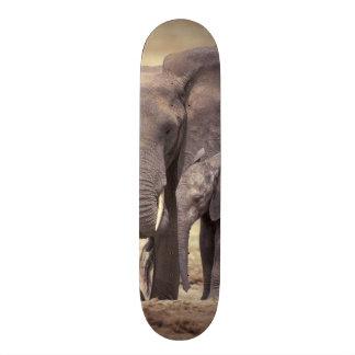 Afrika, Tansania, Tarangire Nationalpark. 2 Bedruckte Skateboarddecks