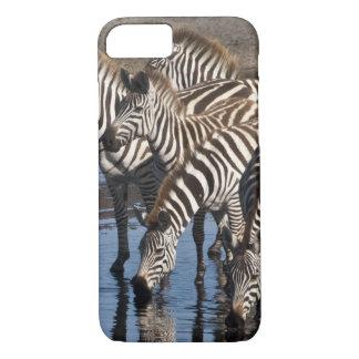 Afrika. Tansania. Zebras, die herein bei Ndutu iPhone 8/7 Hülle