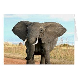 Afrikaner-Bush-Elefant, der zum Erfolgsziel marsch Grußkarte
