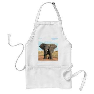 Afrikaner-Bush-Elefant, der zum Erfolgsziel marsch Schürze