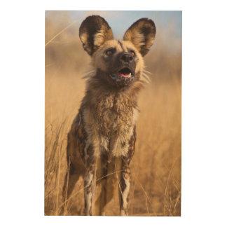Afrikaner gemalter wilder Hund Holzwanddeko