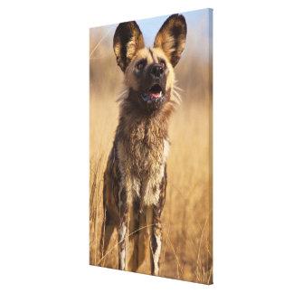 Afrikaner gemalter wilder Hund Leinwanddruck