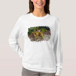 Afrikaner Red Eye Treefrog, Leptopelis 2 T-Shirt