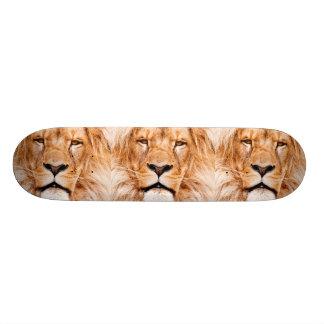 Afrikanische Löwe-Tier-Tiernahaufnahme-Porträt 20,6 Cm Skateboard Deck