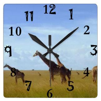 Afrikanische Safari-Giraffen Quadratische Wanduhr