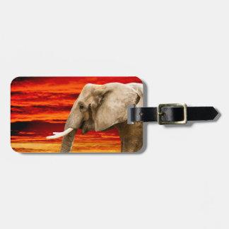 Afrikanischer Elefant - Adressen-Gepäckanhänger Kofferanhänger