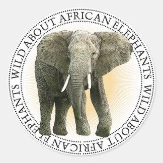 Afrikanischer Elefant-Aufkleber Runder Aufkleber