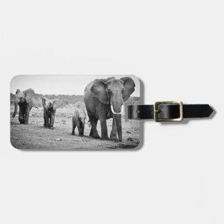 Afrikanischer Elefant u. Kälber   Kenia, Afrika Kofferanhänger