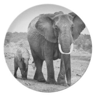 Afrikanischer Elefant u. Kälber   Kenia, Afrika Melaminteller