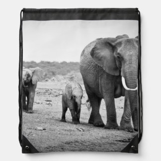 Afrikanischer Elefant u. Kälber | Kenia, Afrika Sportbeutel