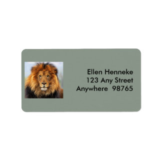 Afrikanischer Löwe 1 Adressaufkleber