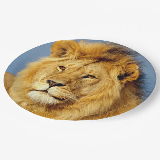 Afrikanischer Löwe 2 Pappteller