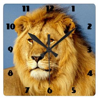 Afrikanischer Löwe 2 Quadratische Wanduhr