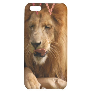 Afrikanischer Löwe iPhone 5C Schale