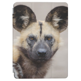 Afrikanischer wilder Hund iPad Air Cover