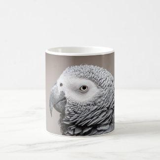 Afrikanisches Grau-Grau-Papagei des Tassen-Kongos Kaffeetasse