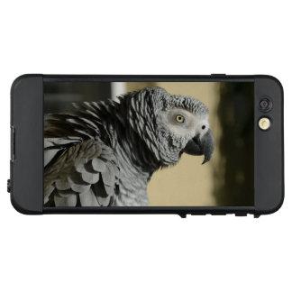 Afrikanisches Grau-Papagei des Kongos mit LifeProof NÜÜD iPhone 6 Plus Hülle