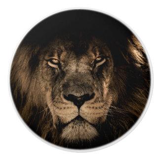 Afrikanisches Löweporträt Keramikknauf
