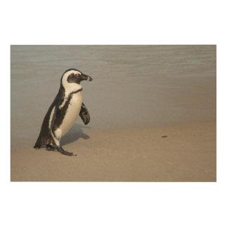 Afrikanisches Pinguin-Gehen Holzwanddeko