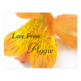Aggie Postkarte