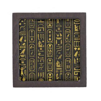 Ägyptische alte Goldhieroglyphen auf Schwarzem Schmuckkiste